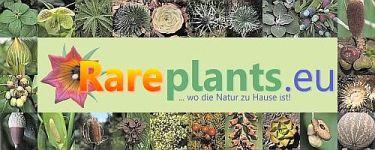 Rareplants.de